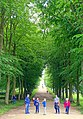 Allee, looking towards Blanche's vase - Chatsworth House - Derbyshire, England - DSC03580.jpg