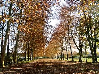 Écommoy Commune in Pays de la Loire, France