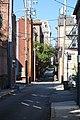 Alley in Mt. Vernon, Baltimore (49070786093).jpg