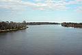 Altamaha River from bridge.jpg