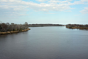 Altamaha River - Image: Altamaha River from bridge