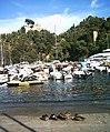 Anatre a Portofino - panoramio.jpg