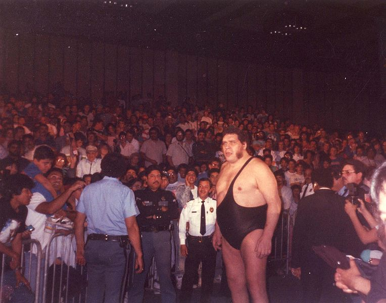 File:Andre the Giant (86288815).jpg