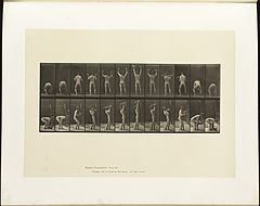 Animal locomotion. Plate 323 (Boston Public Library).jpg