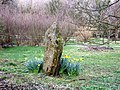 Another Temple Druid stone - geograph.org.uk - 745360.jpg