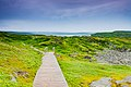 Anse aux Meadows, Newfoundland. (40469732375).jpg