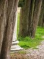 Aquileia 02-2009 - panoramio - adirricor (2).jpg