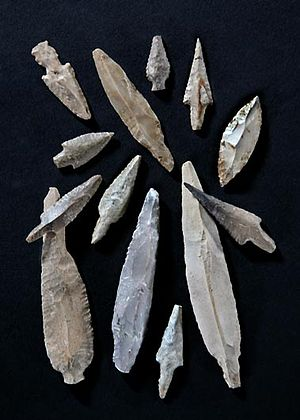 Ashkelon - Ashkelon Pre-Pottery Neolithic C flint arrowheads