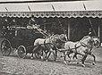 Attelage à quatre chevaux lors de la présentation.