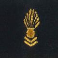 Attribut fourreaux-corps officiers spécialistes Armée de terre.png
