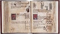 Aubin codex.jpg