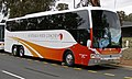 Australia Wide Coaches - Coach Design bodied Scania K480 EB6X2NI Opticruise - SB94CN.jpg