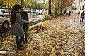 Autumn in Eram Garden 2019-12-09 11.jpg