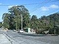 Avenida Coronel Sezefredo Fagundes, altura do nº 3172 - panoramio.jpg