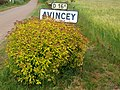 Avincey-FR-21-panneau d'agglomération-03.jpg