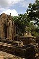 Avukana Buddha Statue and enclosure.jpg