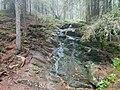 Bäck i Skuleskogen Nationalpark.jpg