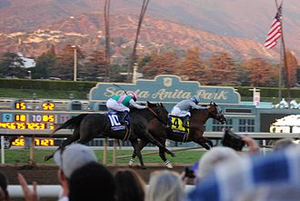 2016 Breeders' Cup Classic - Arrogate chases down California Chrome in the 2016 Breeders' Cup Classic