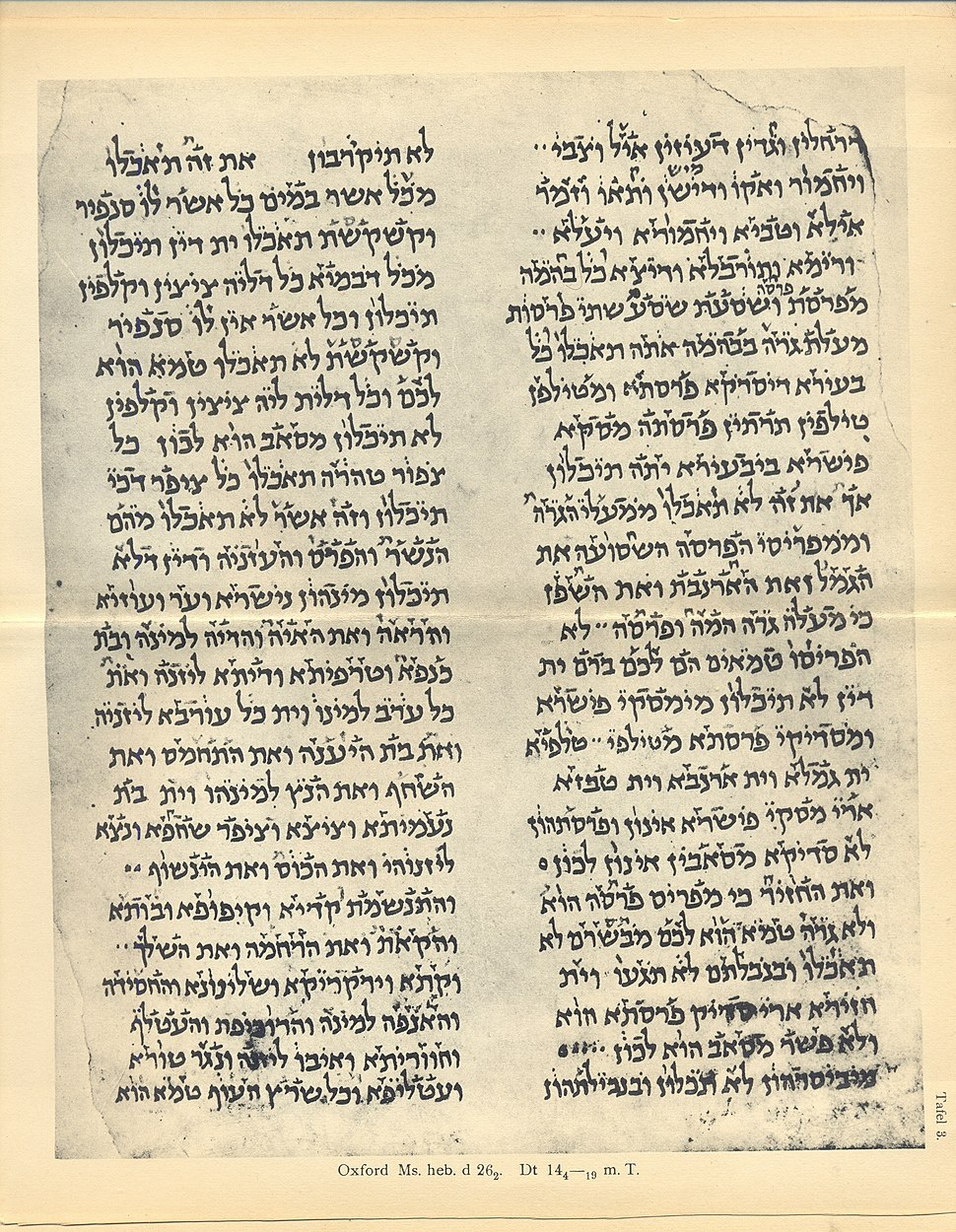 Bab voc fragment 2