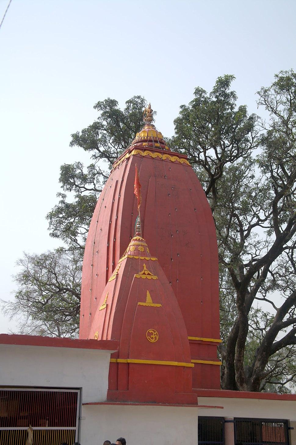 Baba Bhura Dev temple, Shakumbhri Devi - panoramio