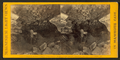 Bacon Chamber, from Robert N. Dennis collection of stereoscopic views 3.png
