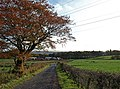 Baillieston Farm - geograph.org.uk - 1026876.jpg