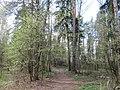 Balashikha, Moscow Oblast, Russia - panoramio (322).jpg