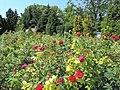 Balchik Botanical Garden 2017 05.jpg