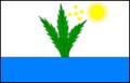 Bandeira-tupirama.png