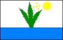 Bandeira de Tupirama