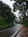 Bandhipur forest road in Kerala 1.jpg