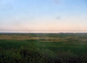 Baraba steppe - Baraba steppe as seen from the window of the Trans-Siberian railway.