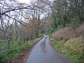 Battle Hill Woodland - geograph.org.uk - 617695.jpg
