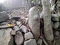 Batu Phallus, situs Watu Lingga Pasanggrahan, Kesugihan, Cilacap.jpg