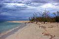 Beach (3031752986).jpg