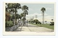 Beach Street, Daytona, Fla (NYPL b12647398-62372).tiff