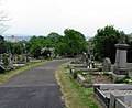 Belfast City Cemetery (3) - geograph.org.uk - 812745.jpg