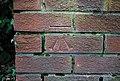 Bench Mark, Bangor - geograph.org.uk - 1743433.jpg