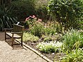 Bench and flower bed at Chelsea Physic Garden - geograph.org.uk - 1429874.jpg
