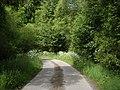 Bend in road to Mergie - geograph.org.uk - 1370289.jpg