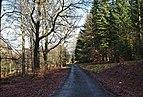 Bicycle friendly road in High Fens, Eupen, Belgium (VeloTour intersection 84, DSCF3691).jpg
