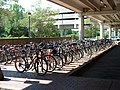 Bicycle parking at Alewife station, August 2001.jpg