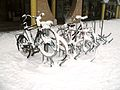 Bicycles in Amsterdam after heavy snow - 9.jpg