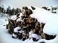 Biella-catasta di legna innevata al Trecciolino.JPG