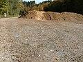 Biomasse - panoramio (3).jpg