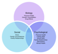 Biopsychosocial Model of Health 1.png