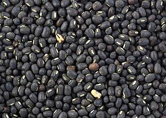Vigna mungo - Dry urad beans