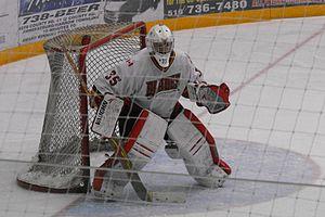 Blenheim Blades - Blenheim Blades goaltender during the 2013-14 season