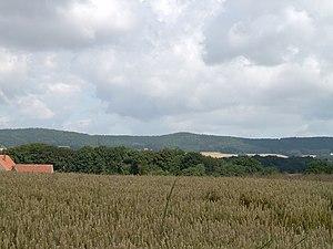 Wiehen Hills - Wiehen Hills