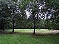 Bomencirkel (50426511716).jpg